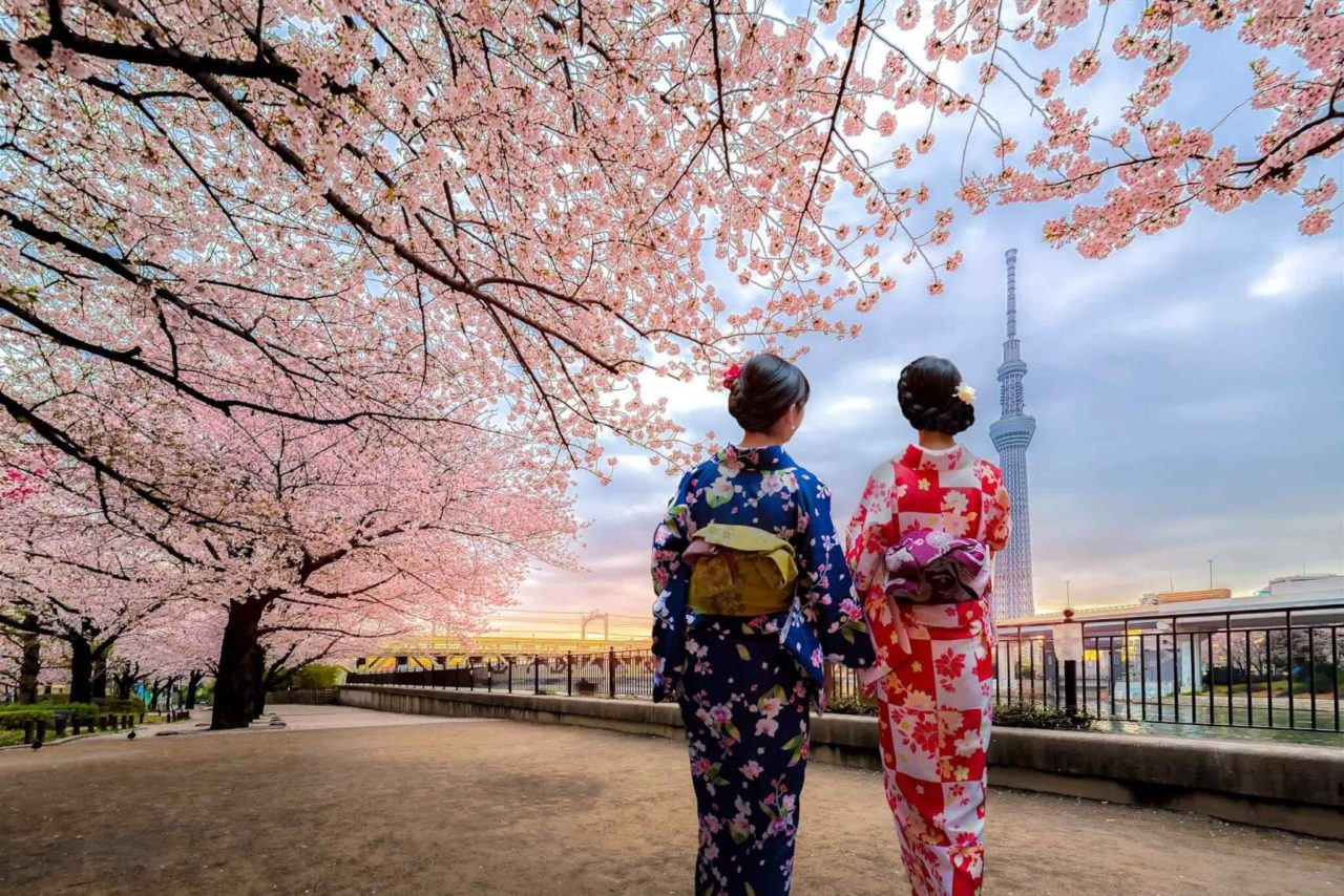 https://ecotours-senegal.com/wp-content/uploads/2018/09/destination-tokyo-03-1280x854.jpg