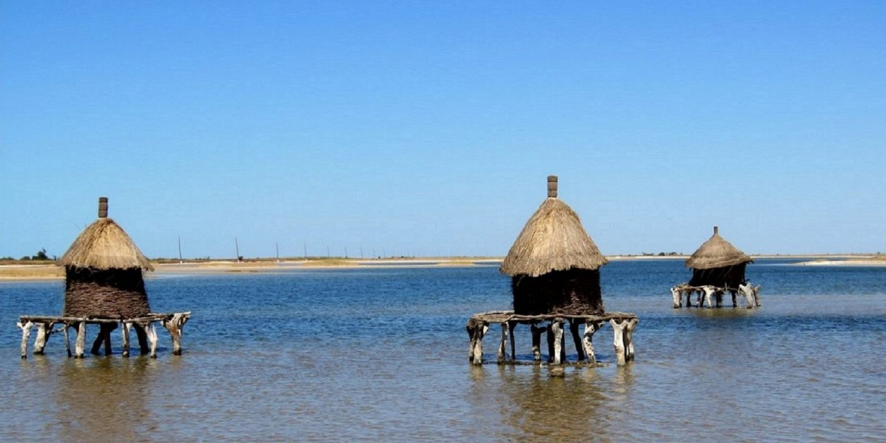 https://ecotours-senegal.com/wp-content/uploads/2020/03/Depósitos-de-sal-1-1280x640.jpg